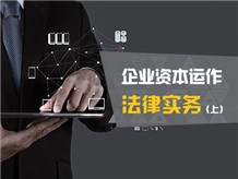 企业资本运作法律实务(上)