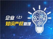 企业知识产权管理(上)