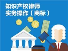 六、知识产权律师实务操作(商标)