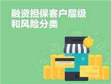 融资担保客户层级和风险分类
