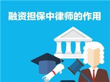 融资担保中律师的作用