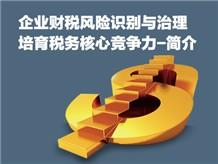 企业财税风险识别与治理—培育税务核心竞争力-简介