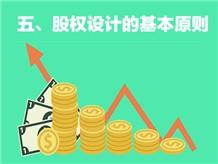 五、股权设计的基本原则