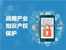 二、战略产业知识产权保护