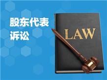 股东代表诉讼