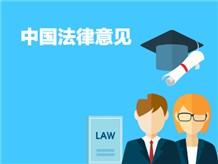 2.中国法律意见